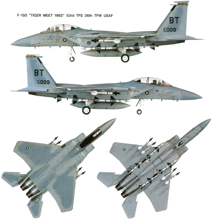f15 eagle. The F-15 Eagle is an