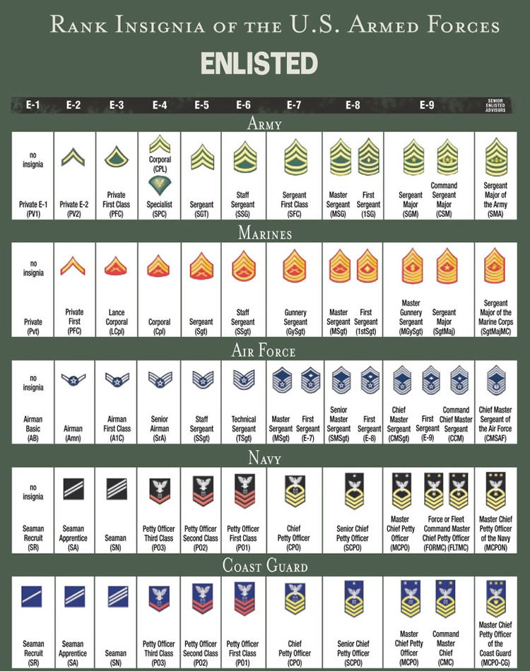United states military rank structure for the air force army rank structure and insignia of enlisted military personnel all branches of us military service sciox Choice Image